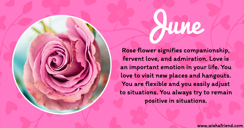 Your Birth Flower is June