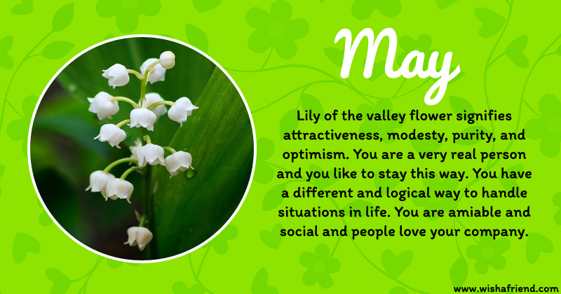 your birth flower is may
