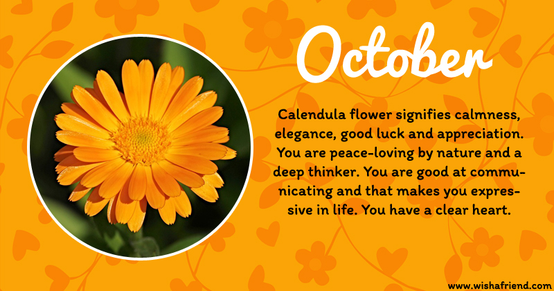 Your birth flower is october for Birth flower october tattoo