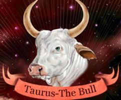 Taurus Man In Love