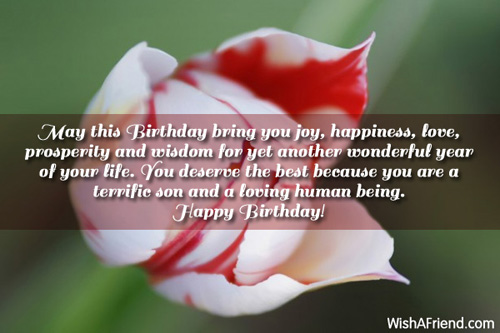 Birthday Wishes For Husband In Christian ~ May this birthday bring you joy birthday wish for son