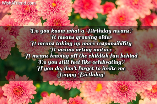 1338-humorous-birthday-wishes