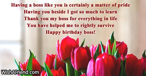 Birthday wishes for boss 14569 boss birthday wishes m4hsunfo