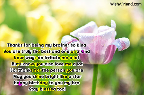 15200-brother-birthday-messages