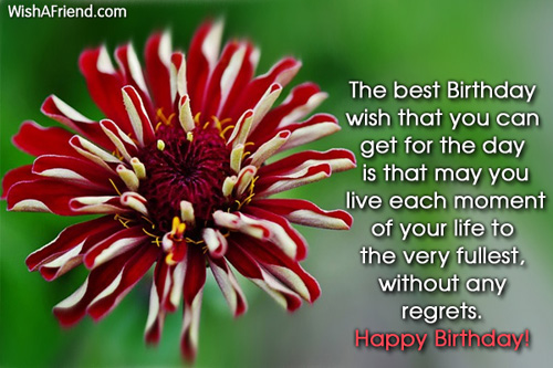 1677-happy-birthday-messages