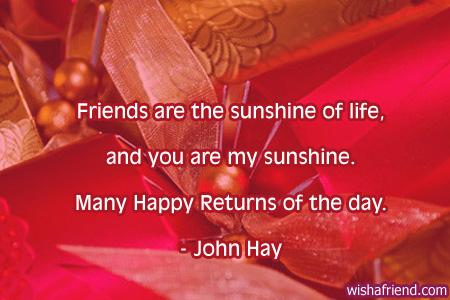 649 Best Friend Birthday Quotes