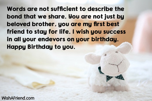 873-brother-birthday-messages