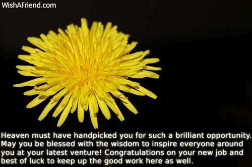 12132-congratulations-for-new-job