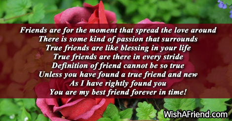 14249-friends-forever-poems