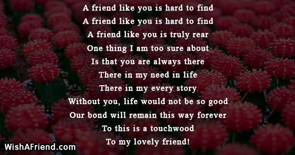 A friend like you is hard to find, True Friends Poem