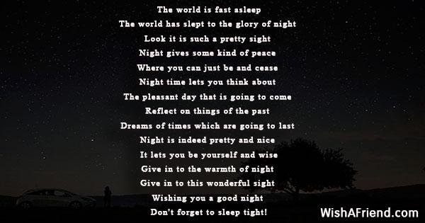 21333-good-night-poems