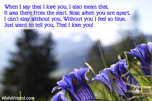 11091-i-love-you-poems