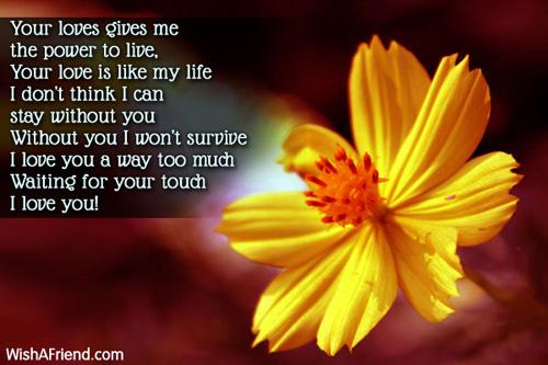 11232-love-poems