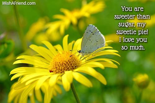 Sweet As Sugar Quote: Sweet Love Sayings