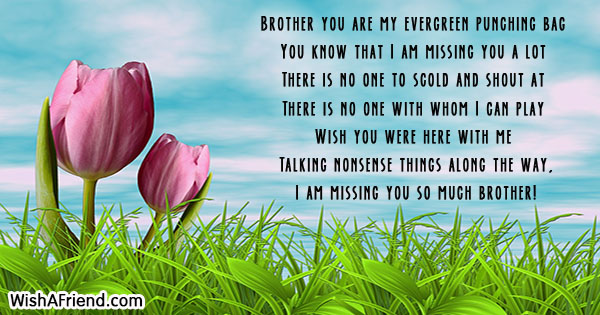 24591-missing-you-messages-for-brother