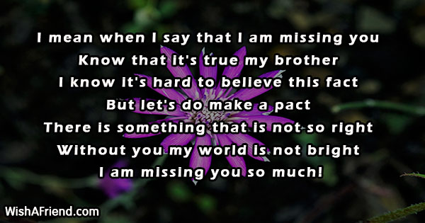 24594-missing-you-messages-for-brother