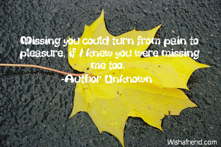 3607-missing-you-quotes