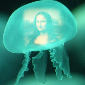 Blue Water Jelly Fish