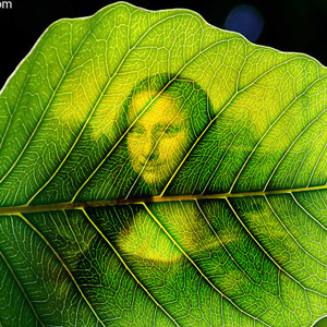 Green Leaf Photo Effect Generator