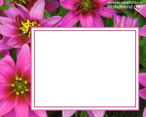 Photo Frame Beautiful Flowers