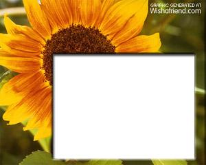 Create Photo Frames Online - Sunflower