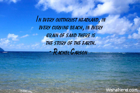 Rachel Carson Quote In Every Outthrust Headland In Every Curving Unique Rachel Carson Quotes