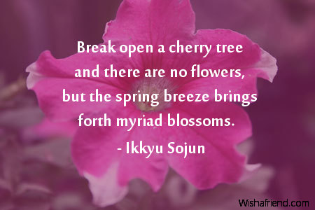Ikkyu sojun quote break open a cherry tree and there are no flowers 4269 flower mightylinksfo