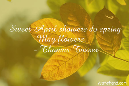 Thomas tusser quote sweet april showers do spring may flowers 4270 flower mightylinksfo