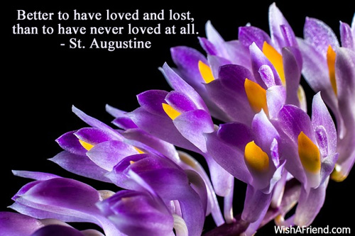 To Have Loved And Lost Quotes: St. Augustine Quote: Better To Have Loved And Lost, Than