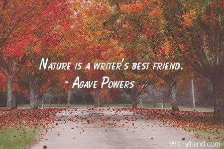7851-nature