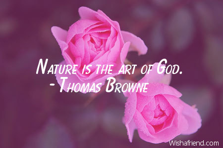 7853-nature