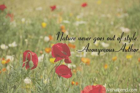 7854-nature