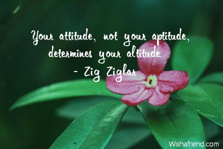 """your attitude determines your altitude essay Years ago, zig ziglar declared, """"it is your attitude, more than your aptitude, that  will determine your altitude"""" when ziglar said that, a lot of people saw it as a."""