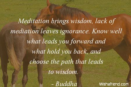 11270-wisdom