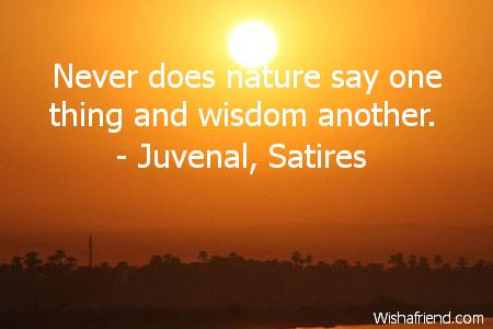11278-wisdom