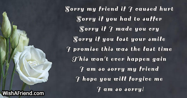 A sorry message to a friend