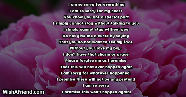 23475-sorry-poems-for-him