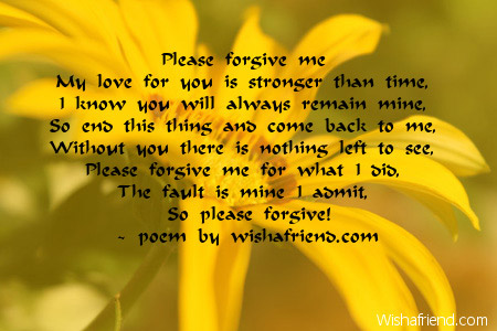 Please forgive me , Sorry Poem For Him