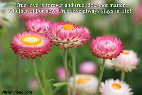 2920-words-of-love