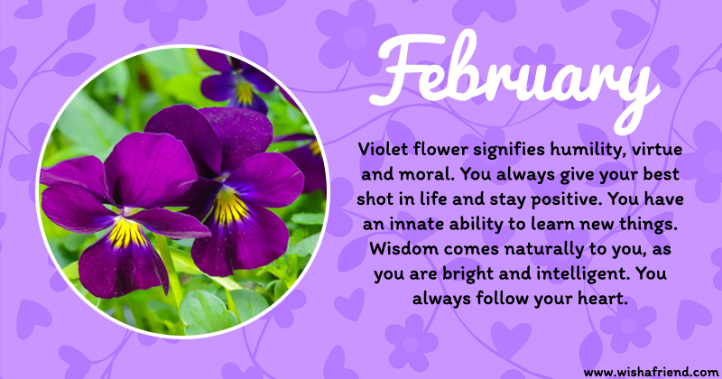 your birth flower is february