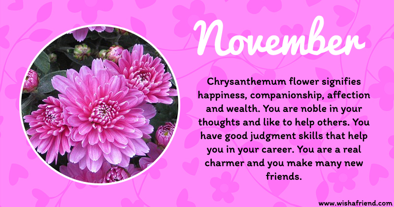 What Does Your Birth Flower Say About You Result