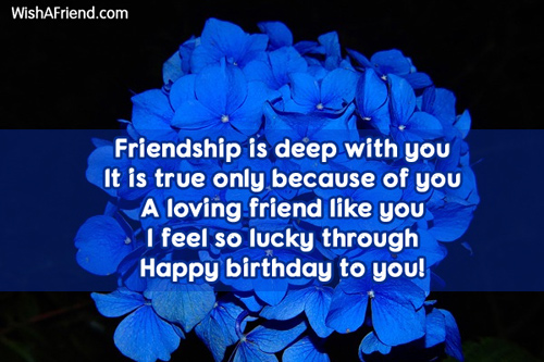 12167-friends-birthday-sayings