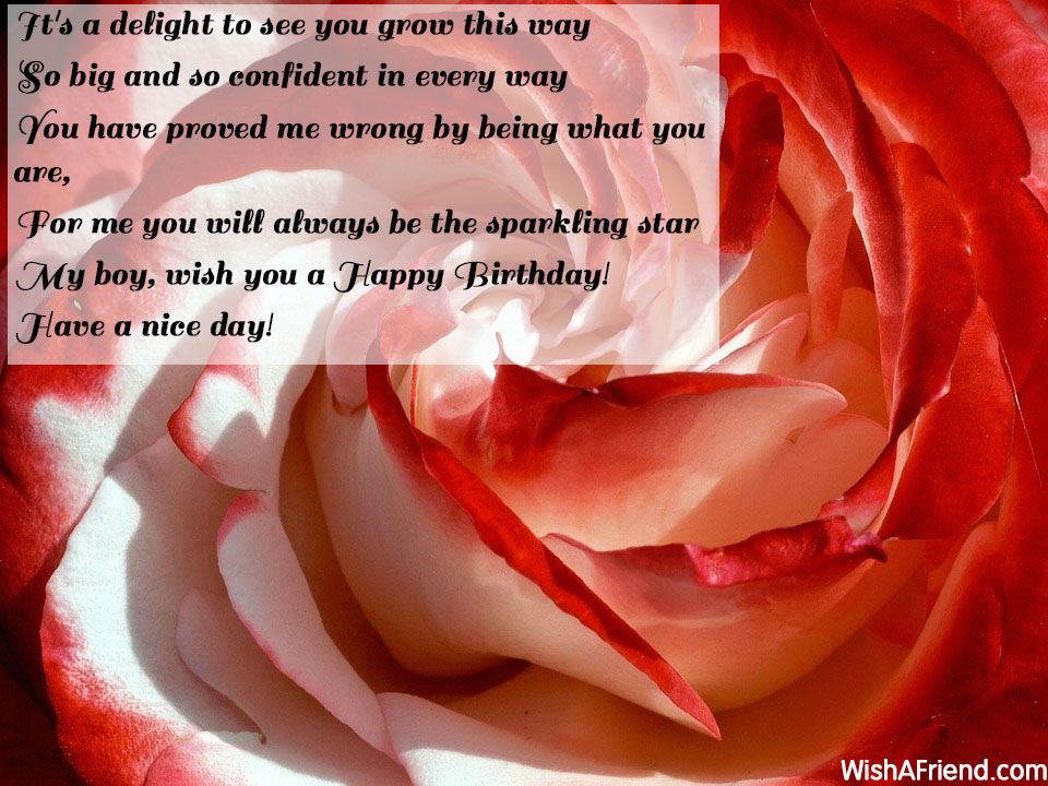 13249-birthday-quotes-for-son