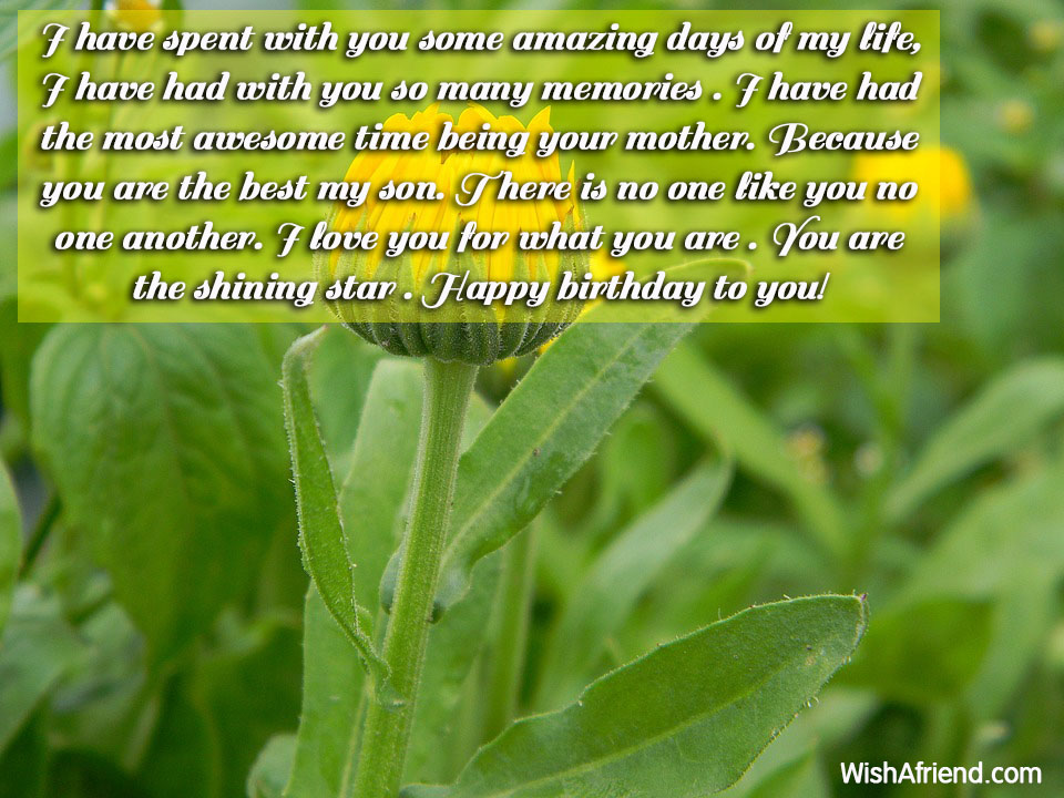 13376-son-birthday-wishes