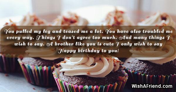 15494-brother-birthday-sayings