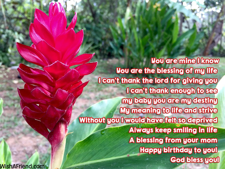 15605-son-birthday-poems