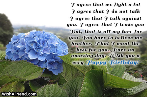 brother-birthday-wishes-21597