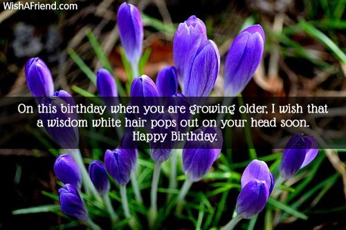 267-funny-birthday-messages