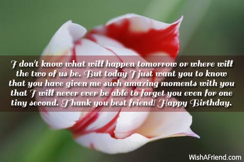 Best Friend Birthday Wishes Page 2