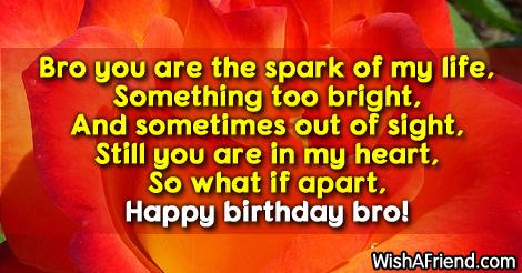 9963-brother-birthday-sayings